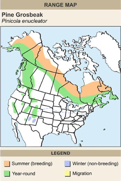 Pine grosbeak range map